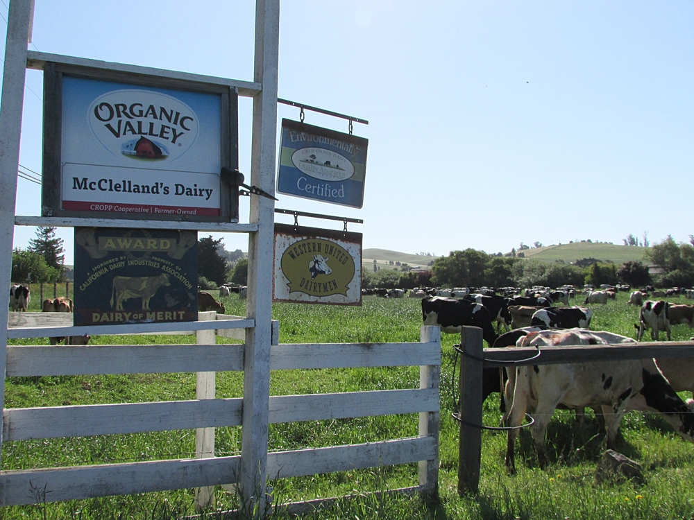 Entrance to McClelland's Dairy
