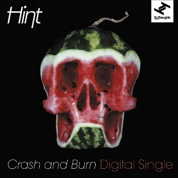 78. HINT - 'Crash & Burn' feat Natalie Storm (The Bamboos Remix)    Tru Thoughts DIGITAL SINGLE TRUDD040 (Tru Thoughts) UK 2012