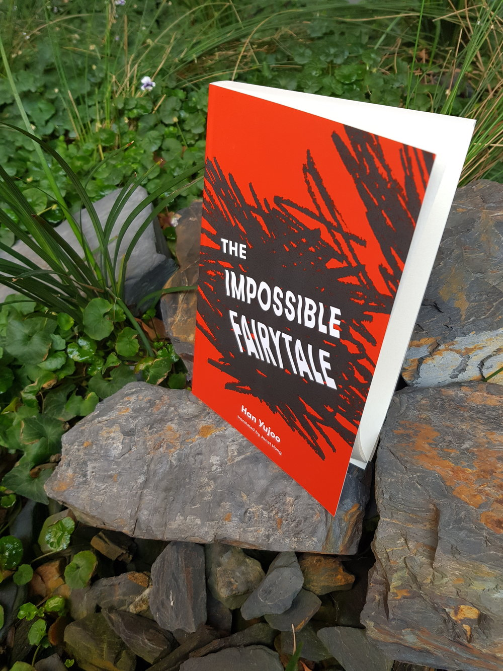"The Impossible Fairytale   Han Yujoo  ""This début novel sketches the barbaric politics of elementary school with terrifying clarity … The narrative turn is both exuberantly postmodern and in dead earnest.""    –The New Yorker"