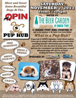 OPIN Pup Hub Harbor Point Beer Garden Stamford CT