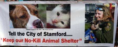 rally for a no kill shelter stamford ct