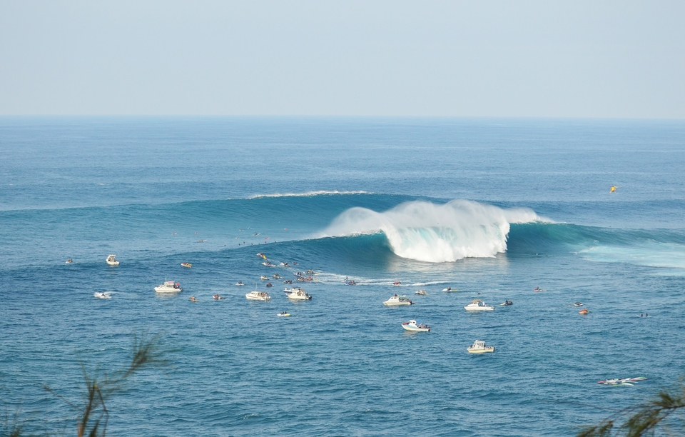Jaws lineup