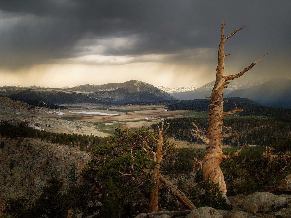 Siberian Outpost, Sierra Nevada Range