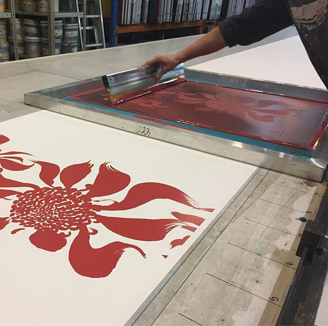 Remi printing up 20 metres of our Waratah wallpaper. Not long not till you can order yours online! Either choose from our stock range of colours or create your own! #publisher #publisherwallpapers #handprintedwallpaper #wallpaper #screenprintingismyhustle #alwayshandprint #deathbeforedigital #madeinsydney #madeinaustralia