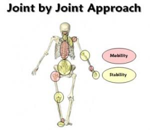Joint by Joint Approach by Mike Boyle and Gray Cook