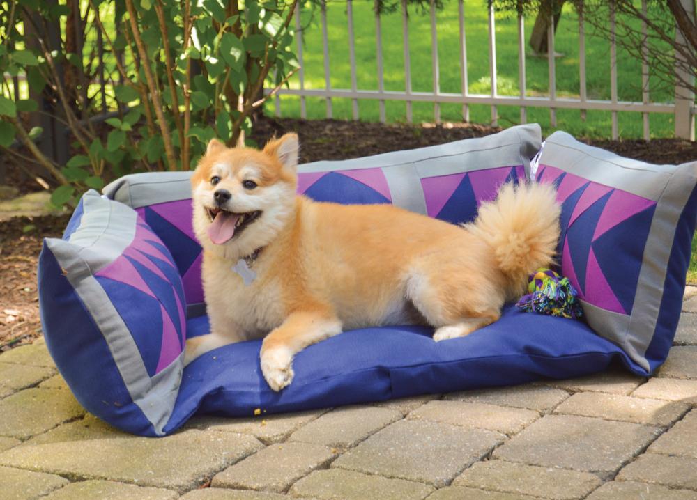 dog-bed.jpg