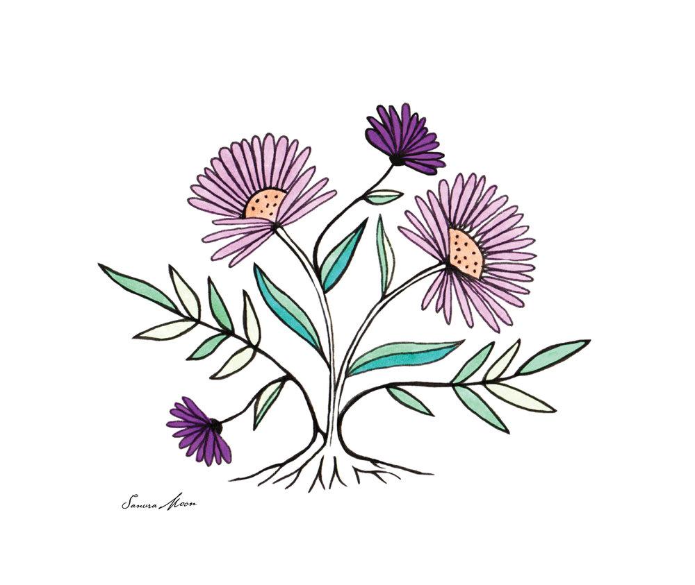 Flower_Draw_1.jpg