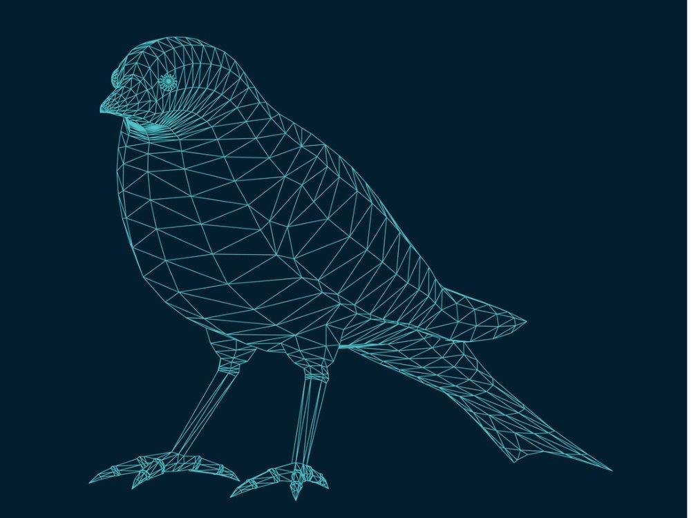 illustration-of-an-isolated-bird-vector-id688512334.jpg