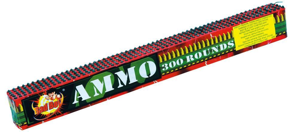 Ammo 300.jpeg