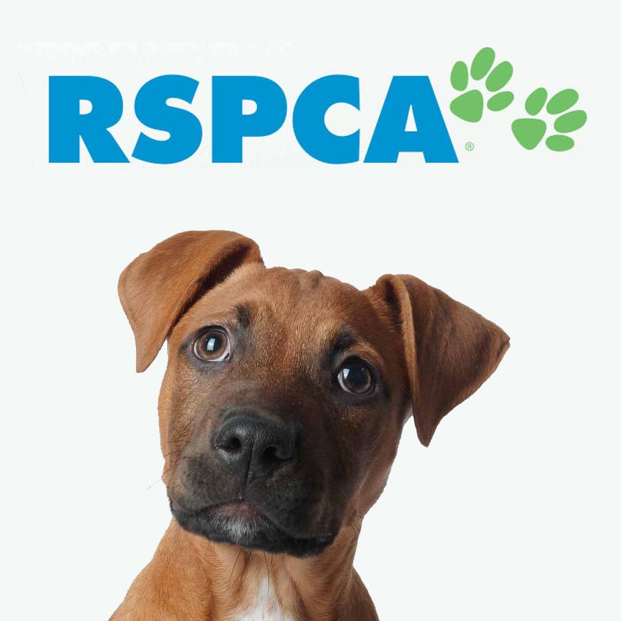 RSPCA logo.jpg