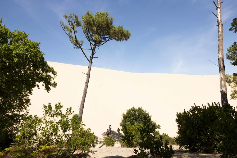 france west coast dune of pilat