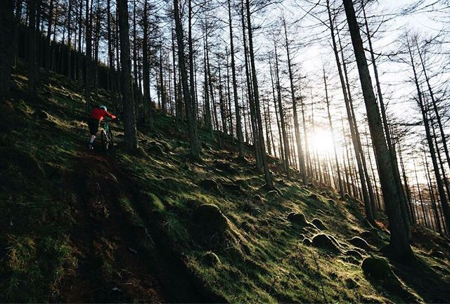 One more run! 🚵 • • • • • • • • •  #outsideisfree #optoutside #freshairclub #outdoorbloggers #wildernessmakesyoubetter #adventurebybike #livebreathoutdoors #pedalforever #cyclingphotos #velo  #liveauthentic #bikelife #bikewander #vsco #ridemoremtb #lakesmtb  #ridethelakes #eskapepod  #starttheadventure #ntchallenge #thegreatoutdoors #ukshots #riseoutdoors #livebravely