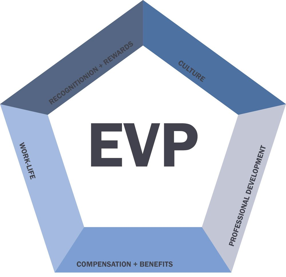 Employee value proposition (EVP) (or employer value proposition) is a set of associations and offerings provided by an organization in return for the skills, capabilities and experiences an employee brings to the organization.