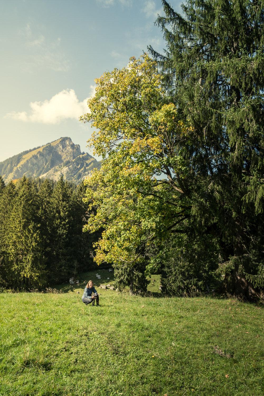 170923_Bergwelten_a6300-015.jpg