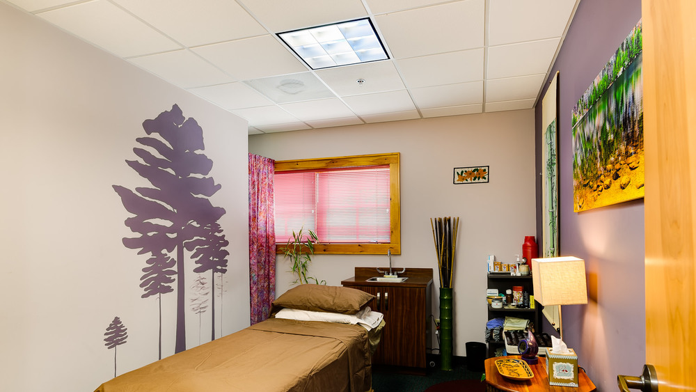 adirondack-integrative-health-acupuncture-lake-placid-ny-3.jpg