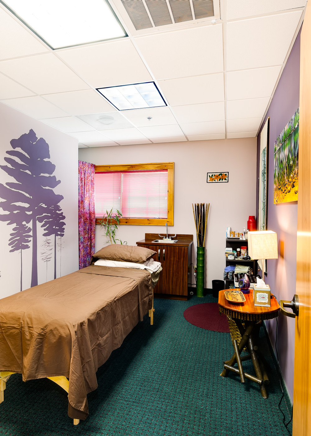 adirondack-integrative-health-acupuncture-lake-placid-ny-4.jpg