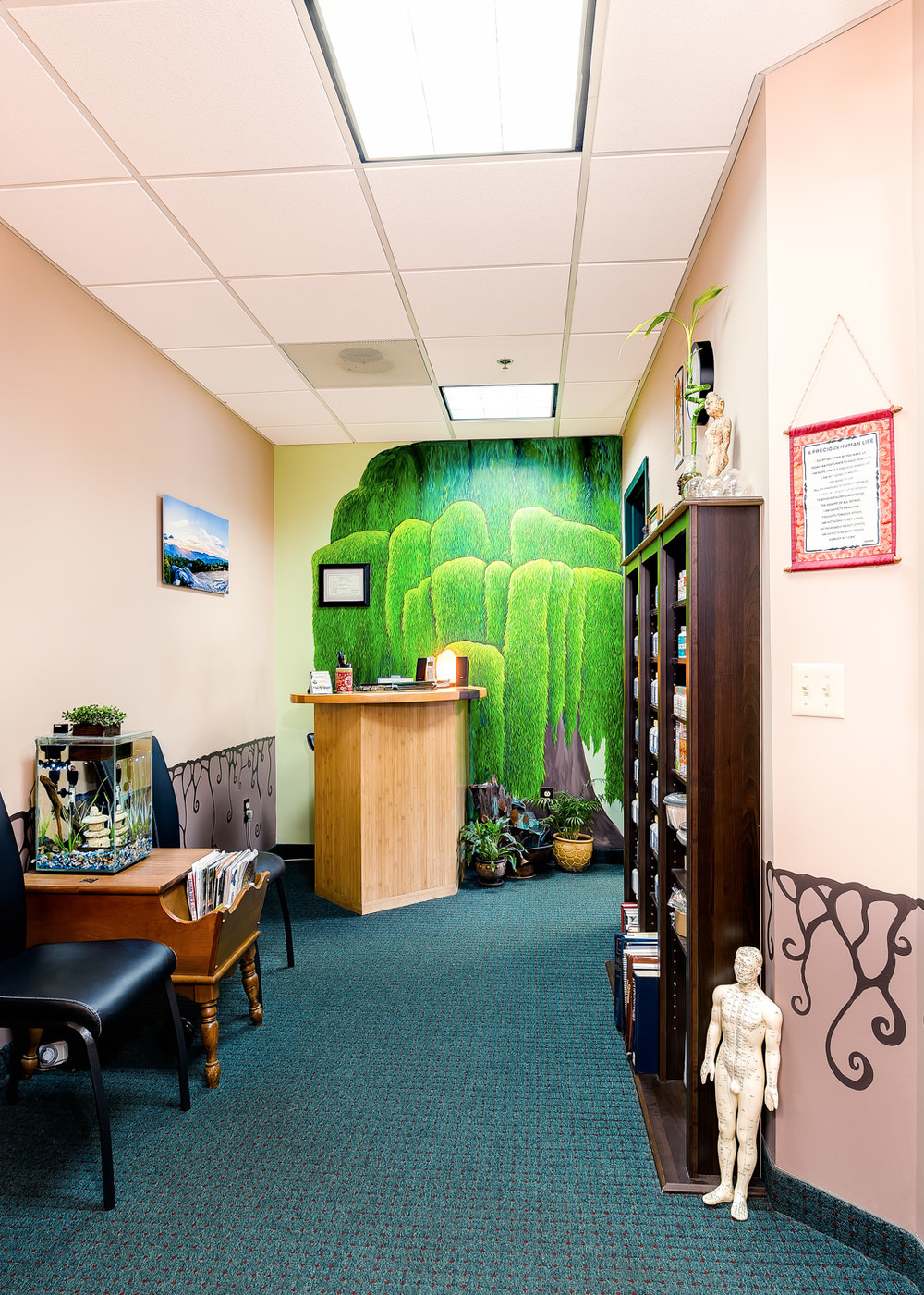 adirondack-integrative-health-acupuncture-lake-placid-ny-2.jpg