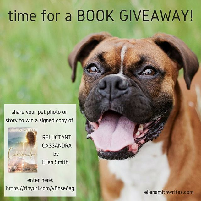 My 1st novel, #ReluctantCassandra , was published 3 years ago today! I'm celebrating over on the #blog with a fun #bookgiveaway 🎉 More details at https://tinyurl.com/y8hse6ag  #twitter