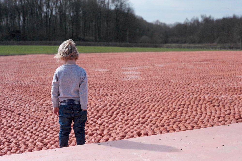 © Provincie West-Vlaanderen - Harold Naeye - Koen Vanmechelen