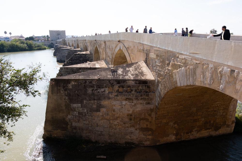 Malaga - Cordoba (190 van 235).jpg