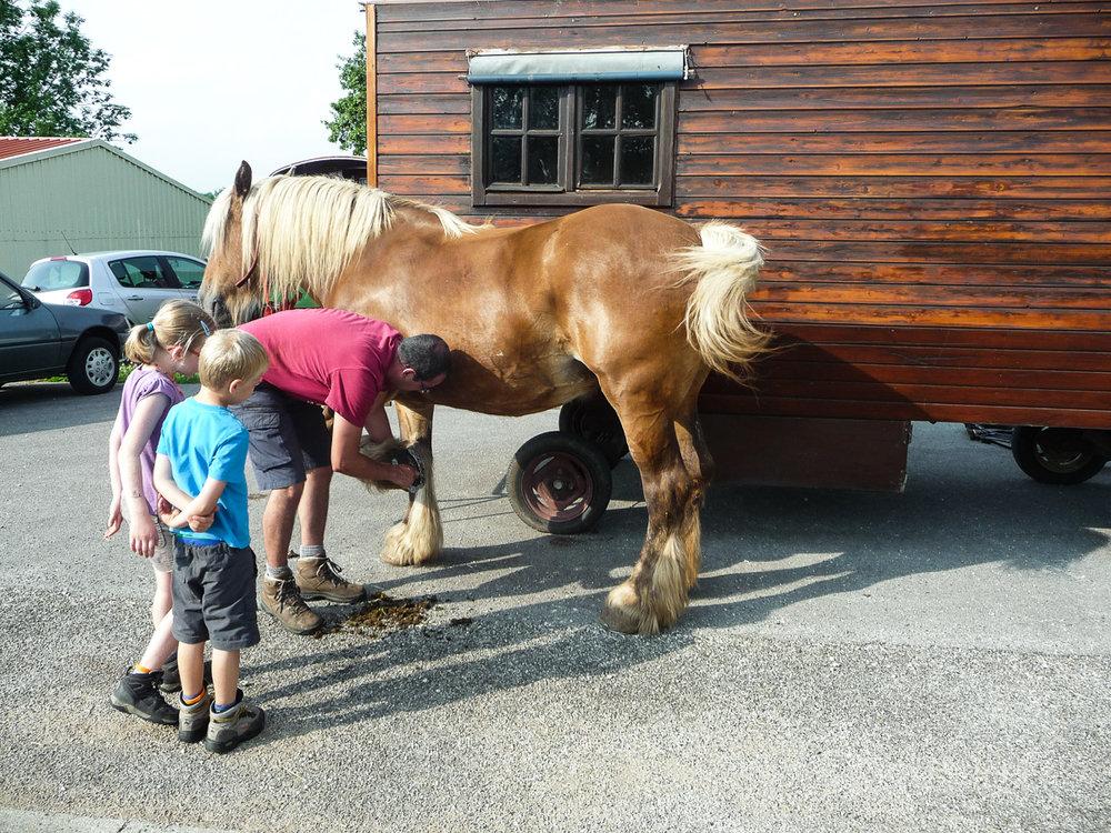 vaderklap paard en kar klein-3.jpg