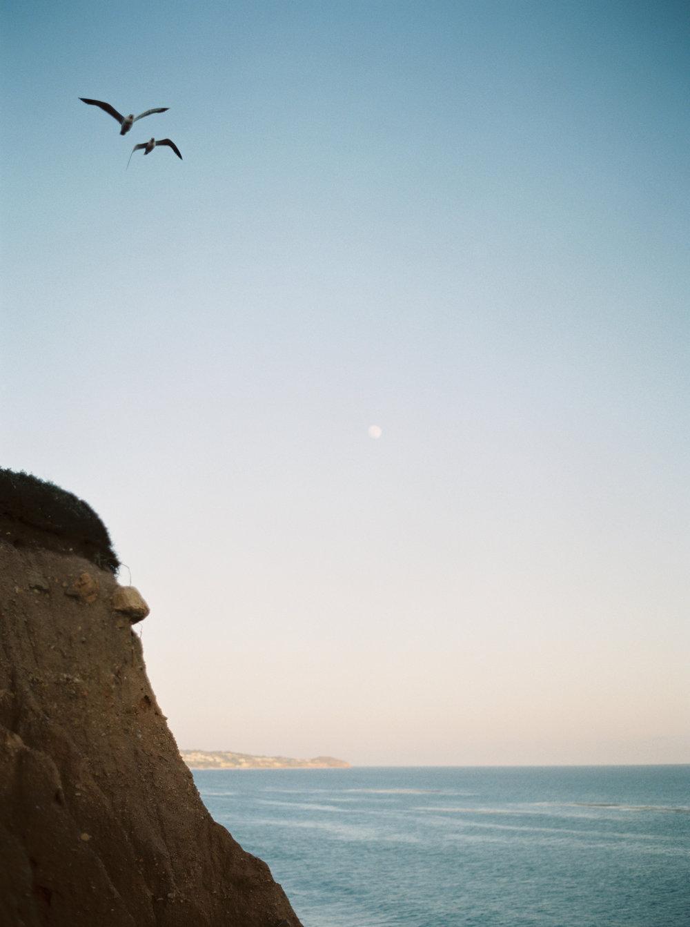 Los+Angeles+Malibu+California+Destination+Wedding+Planner+Designer+Brilliant+Wedding+Co..jpeg