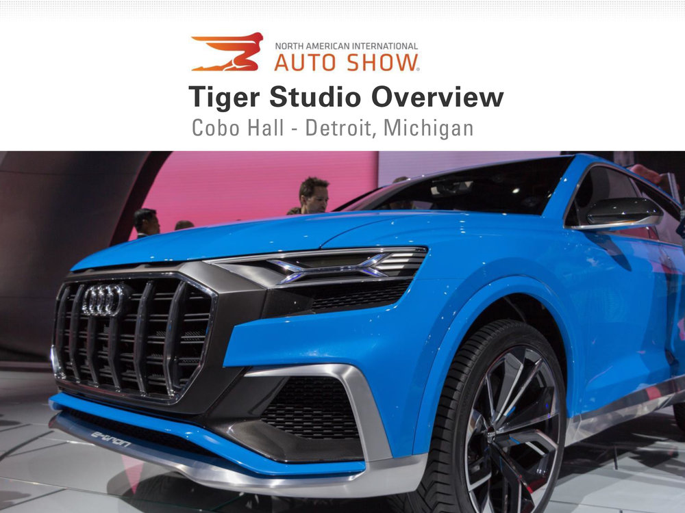 Auto Show 2017, Tiger Studio, 7 Feb (dragged).jpg