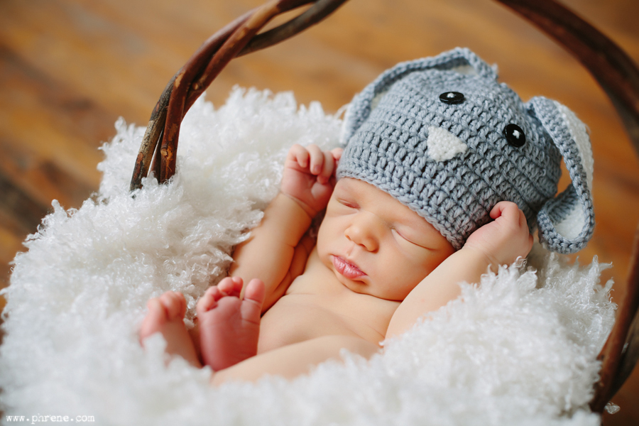 Grand-Rapids-newborn-photographer01