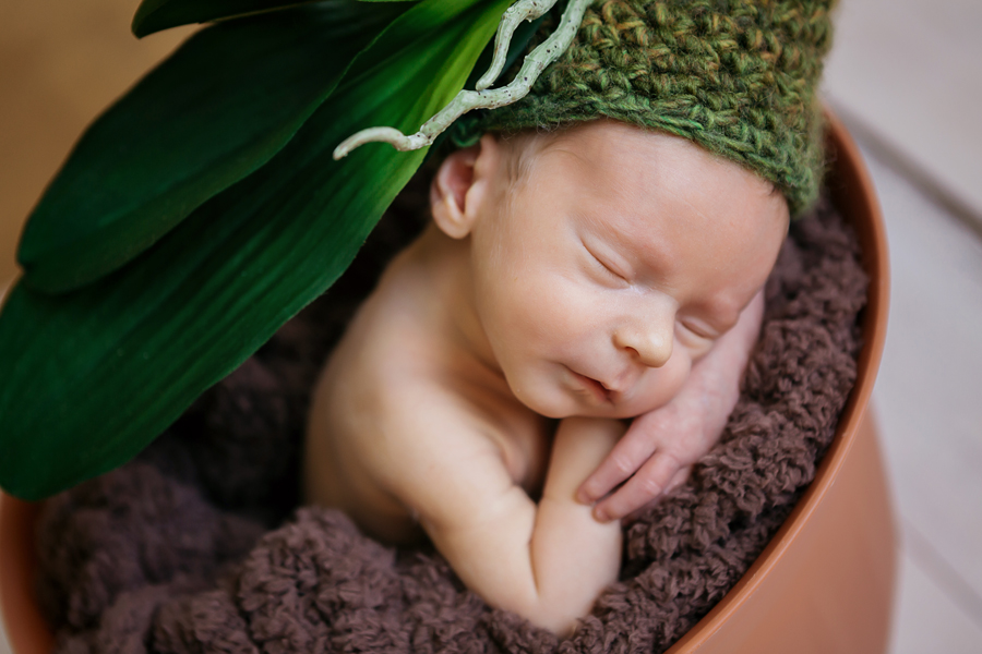 newbornboy14.jpg