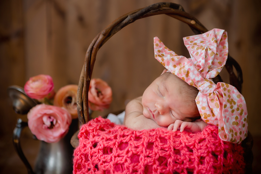 GrandRapidsnewbornphotographer18.jpg