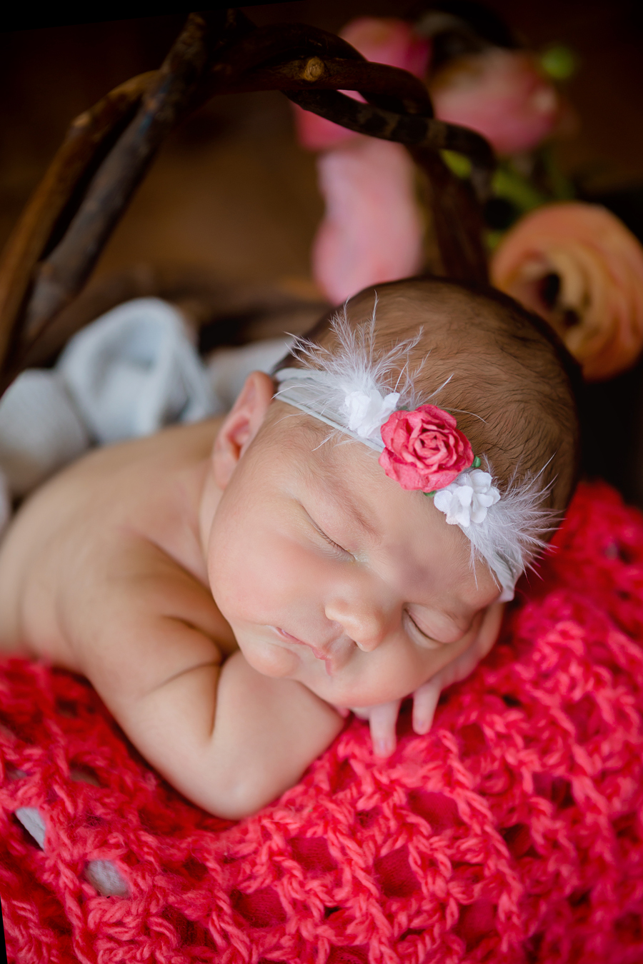 GrandRapidsnewbornphotographer23.jpg