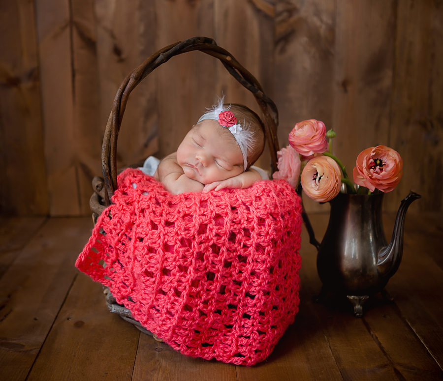 GrandRapidsnewbornphotographer24.jpg