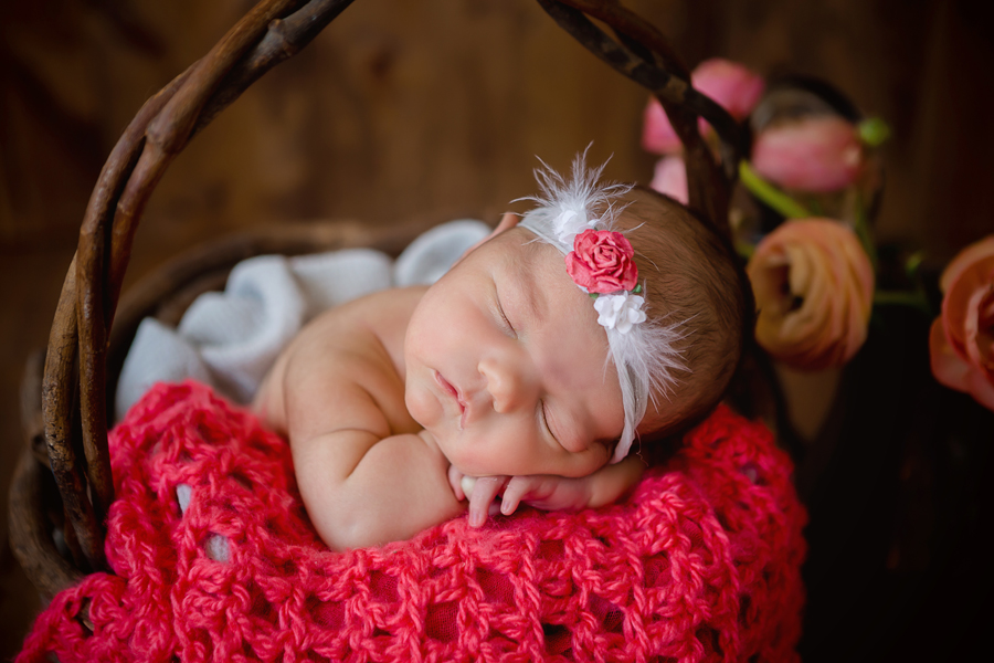 GrandRapidsnewbornphotographer27.jpg