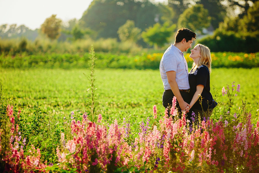 field of flowers engagement photography024.jpg