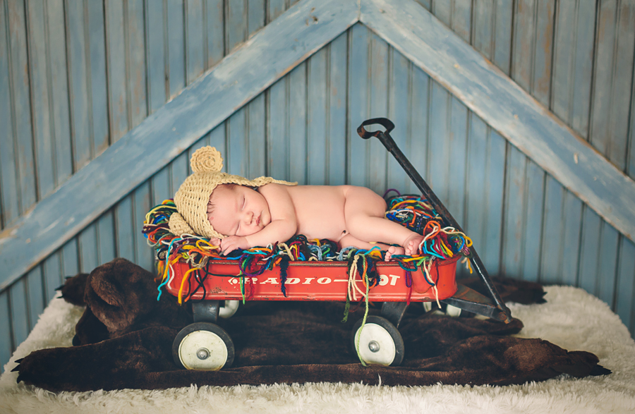 Grand Rapids Newborn Photographer009.jpg