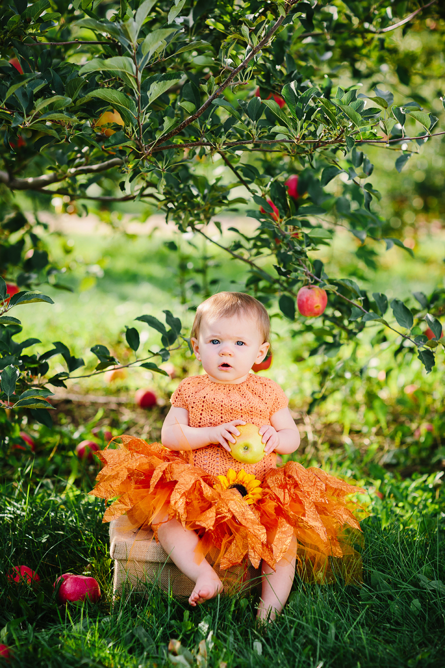 1year-baby-pumpkin-patch-photography01.jpg