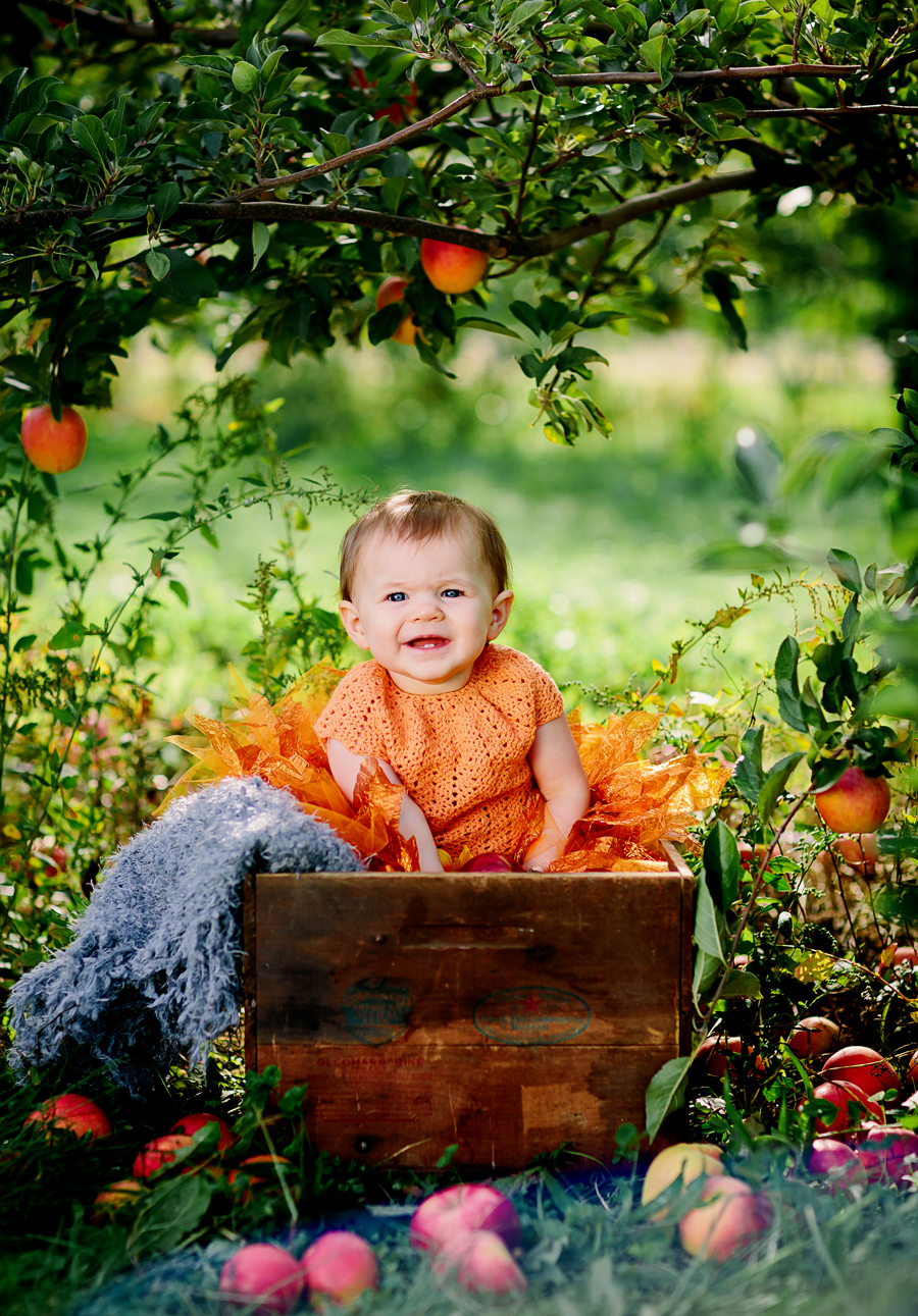 1year-baby-pumpkin-patch-photography05.jpg