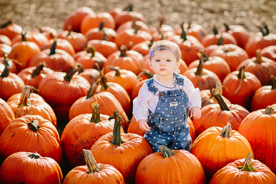 1year-baby-pumpkin-patch-photography15.jpg