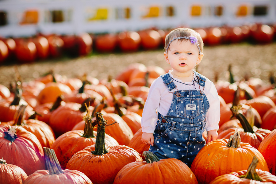 1year-baby-pumpkin-patch-photography17.jpg