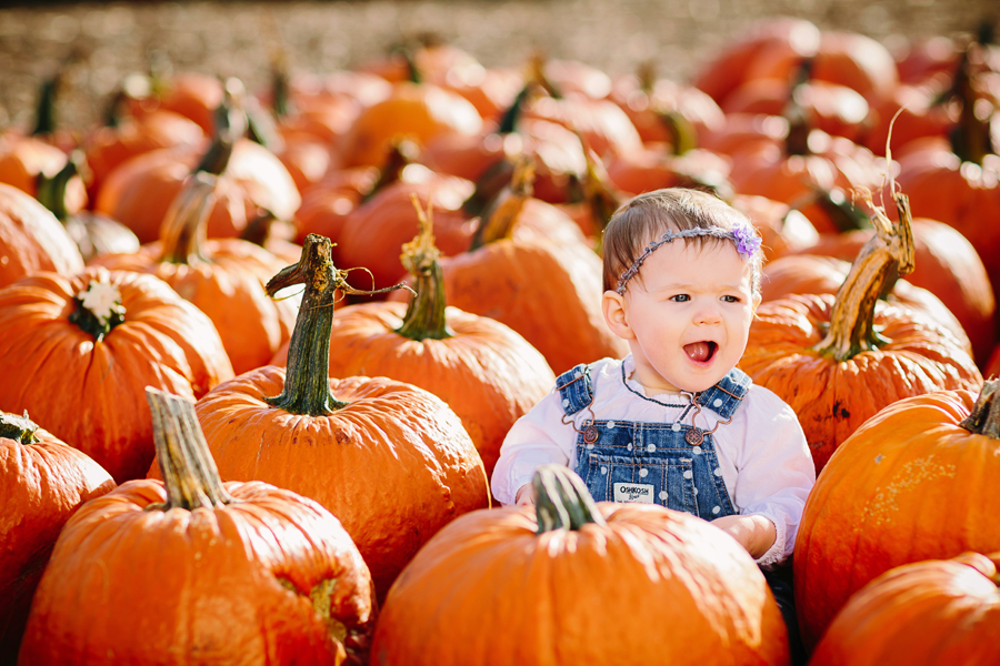 1year-baby-pumpkin-patch-photography18.jpg