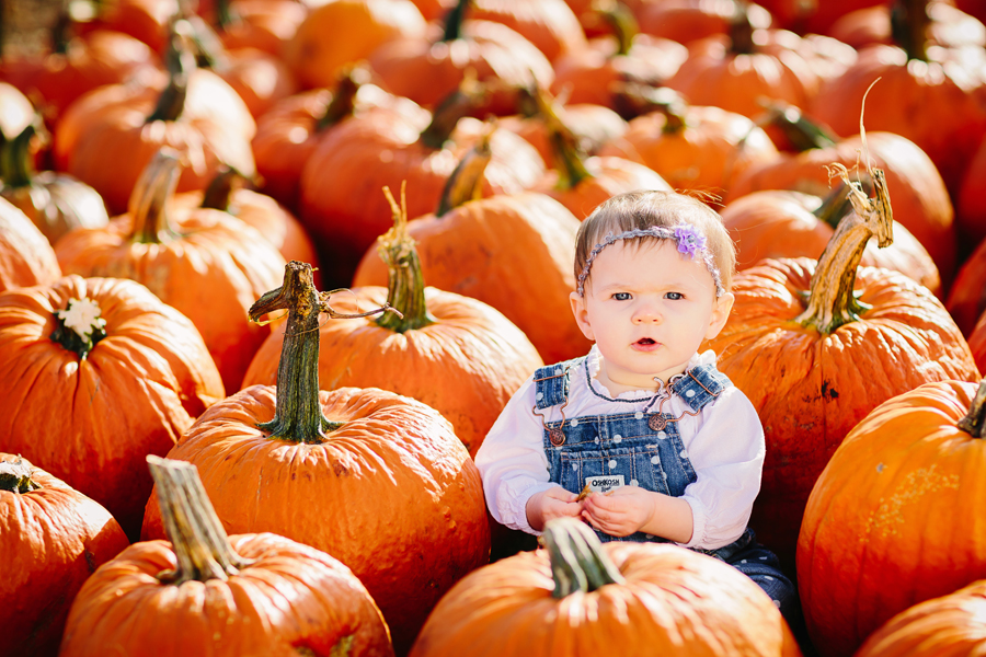 1year-baby-pumpkin-patch-photography19.jpg