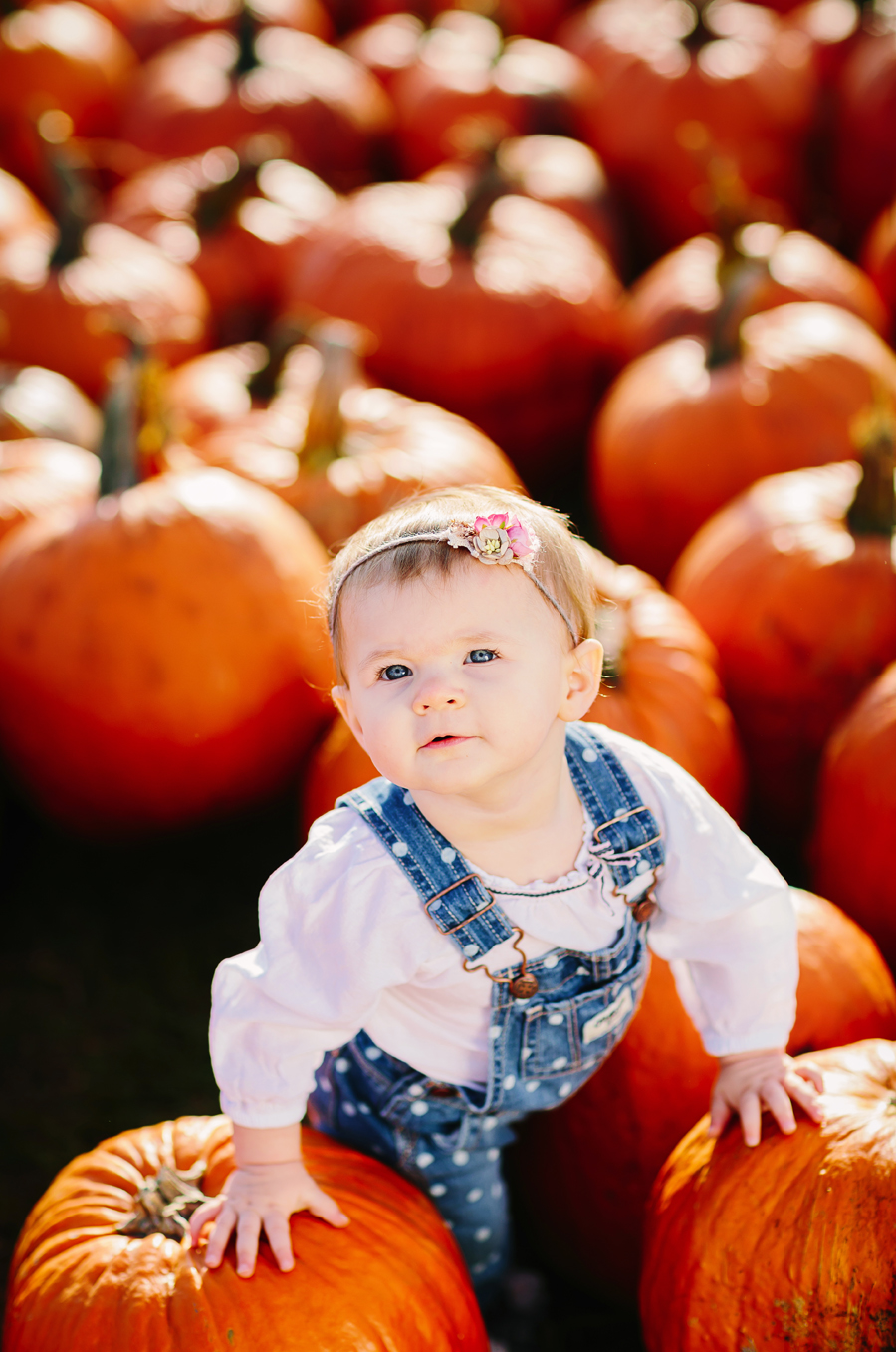 1year-baby-pumpkin-patch-photography20.jpg
