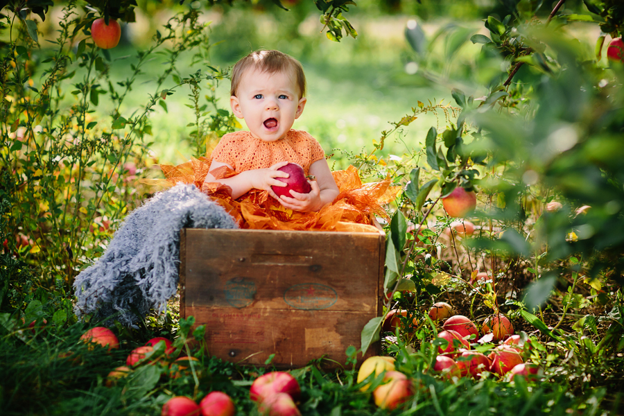 1year-baby-pumpkin-patch-photography04.jpg