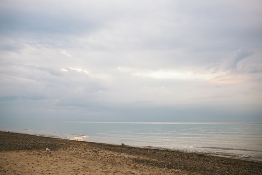 Bohemian-Lake-Michigan-Beach-Wedding071.jpg