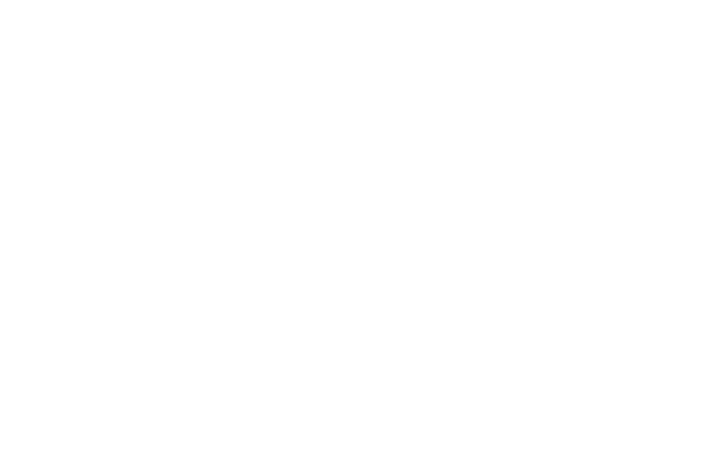 Official Selection - Circle City Film Festival - 2018 - Laurel White.png