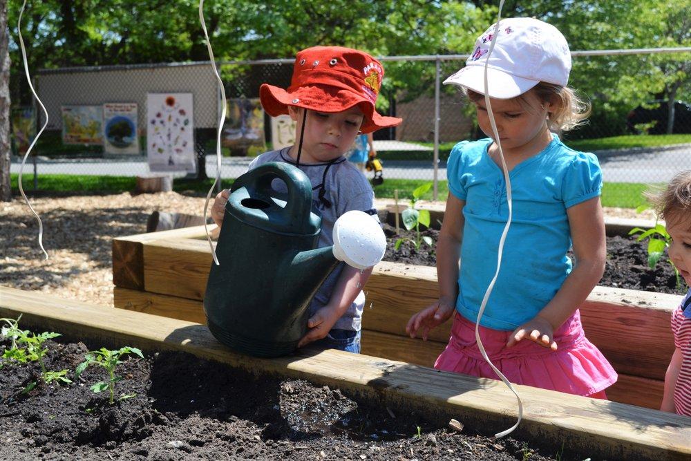 Children learning to garden