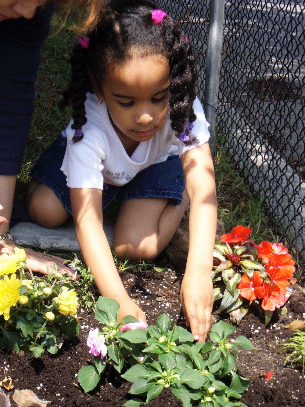 Children gardening at Kaban Montessori