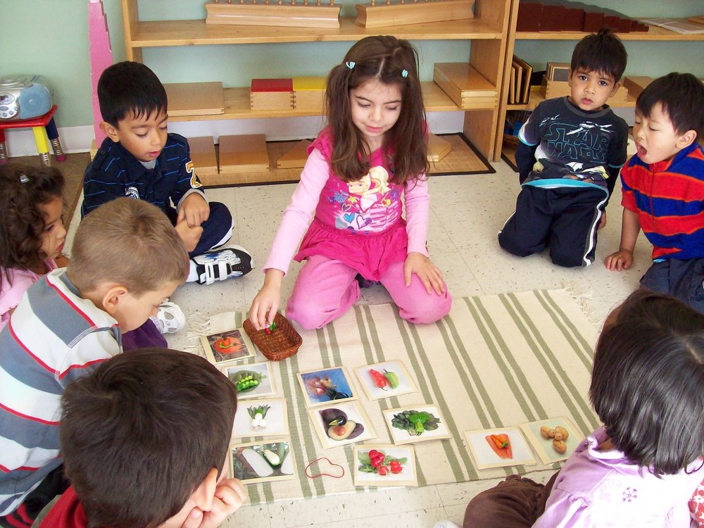 Children working together with cards together at Kaban Montessori in Mississauga.