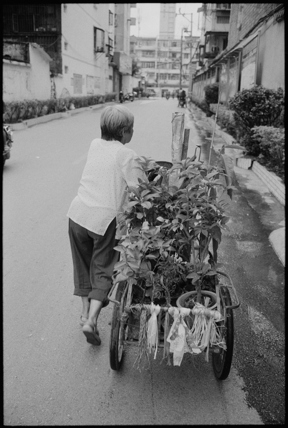 woman with flower cart.jpg