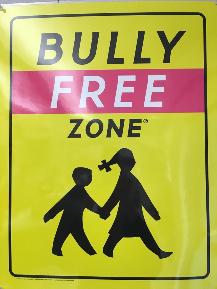 bully free zone.jpeg